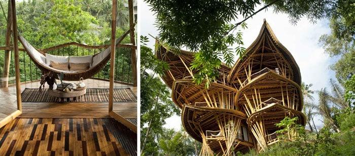 maison bambou